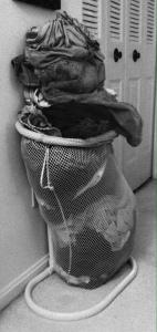 laundry chicken
