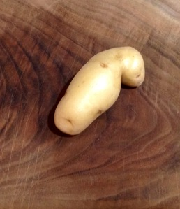 I can't decide if this potato is a manatee or a human embryo.