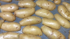 These potatoes did not save themselves Charlotte's Web style.